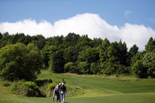 국내 골프장 연간 배출 산소, 195만 명 호흡량과 동일